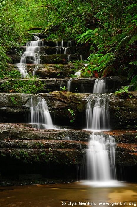 landscapes stock photography | The Terrace Falls, Hazelbrook, Blue Mountains, NSW, Australia, Image ID AU-NSW-BM-TERRACE-FALLS-0001