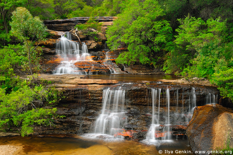 landscapes stock photography | Queen's Cascades, Wentworth Falls, Blue Mountains National Park, NSW, Australia, Image ID AU-NSW-BM-WENTWORTH-FALLS-0001