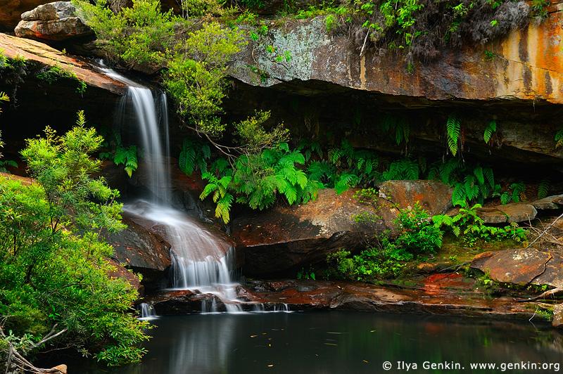 landscapes stock photography | Upper Gledhill Falls, Ku-ring-gai Chase National Park, NSW, Australia, Image ID NSW-GLEDHILL-FALLS-0001