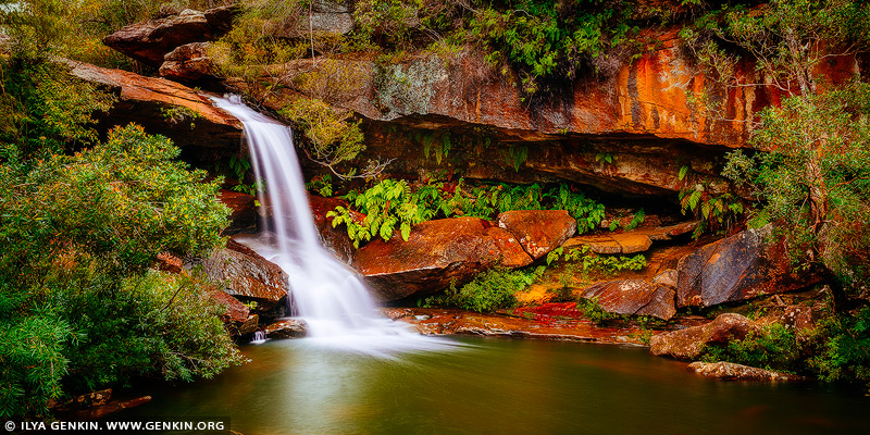 landscapes stock photography | Upper Gledhill Falls, Ku-ring-gai Chase National Park, NSW, Australia, Image ID NSW-GLEDHILL-FALLS-0002