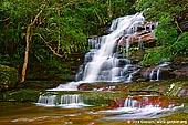Somersby Falls, NSW, Australia,