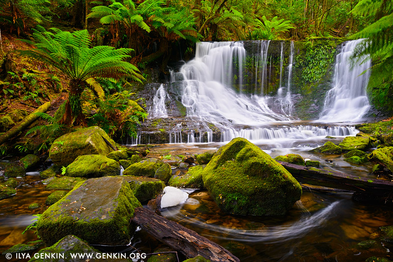 landscapes stock photography | Horseshoe Falls, Mount Field National Park, Tasmania (TAS), Australia, Image ID TAS-HORSESHOE-FALLS-0001