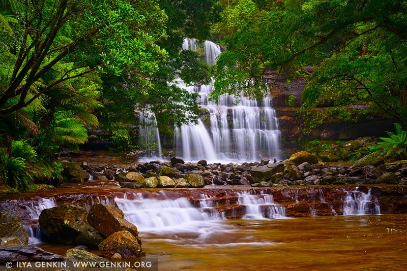 landscapes stock photography | Liffey Falls, Liffey Falls State Reserve, Tasmania (TAS), Australia