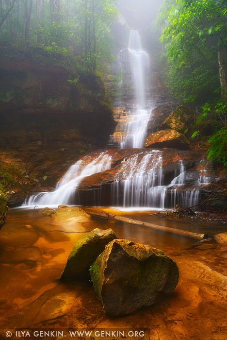 landscapes stock photography | Empress Falls, Valley of the Waters Creek, Blue Mountains National Park, New South Wales (NSW), Australia, Image ID AU-EMPRESS-FALLS-0003