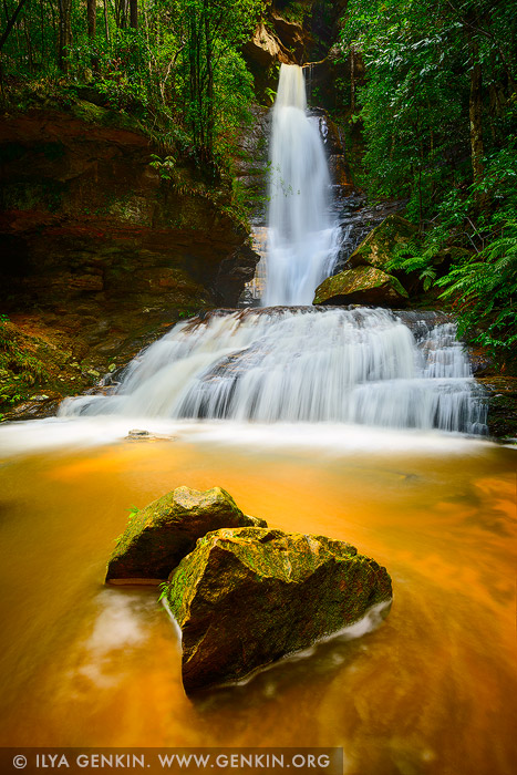 landscapes stock photography | Empress Falls, Valley of the Waters Creek, Blue Mountains National Park, New South Wales (NSW), Australia, Image ID AU-EMPRESS-FALLS-0004
