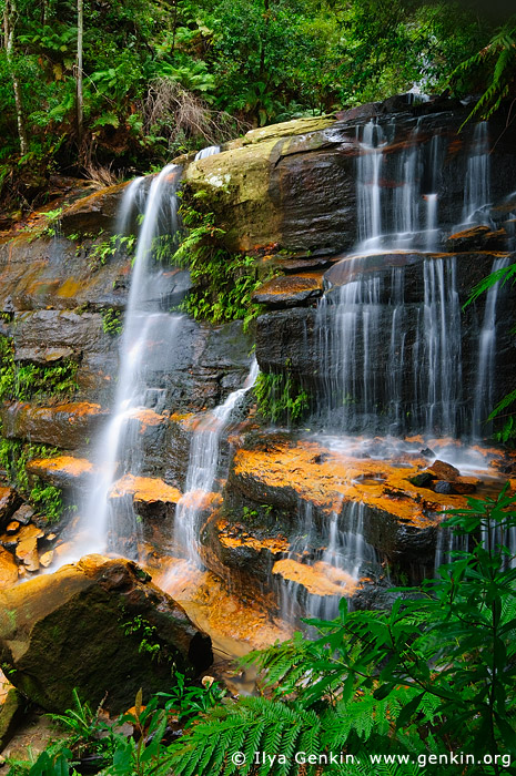 Flat Rock Falls, Valley of the Waters Creek, Blue Mountains National Park, New South Wales (NSW), Australia