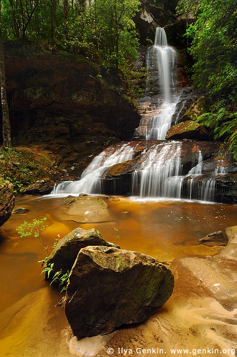 landscapes stock photography | Empress Falls, Valley of the Waters Creek, Blue Mountains National Park, New South Wales (NSW), Australia, Image ID AUWF0019