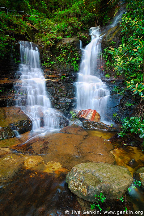 landscapes stock photography | Lodore Falls, Valley of the Waters Creek, Blue Mountains National Park, New South Wales (NSW), Australia, Image ID AUWF0020