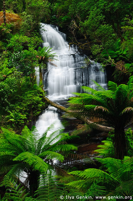 landscapes stock photography | Triplet Falls, Great Otway National Park, VIC, Australia, Image ID VIC-TRIPLET-FALLS-0001