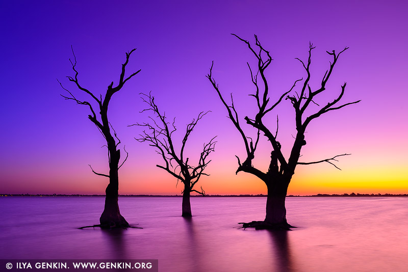 landscapes stock photography | Sunset at Lake Bonney, Barmera, Riverland, South Australia, Australia, Image ID AU-LAKE-BONNEY-RIVERLAND-0003