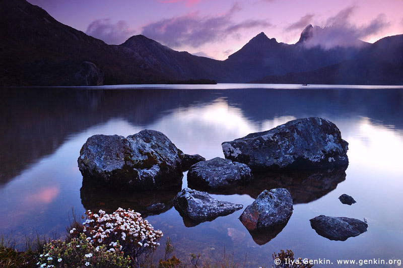 landscapes stock photography | Lake Dove after Sunset, Cradle Mountain National Park, Tasmania, Australia, Image ID LAKE-DOVE-CRADLE-MOUNTAIN-TAS-0002