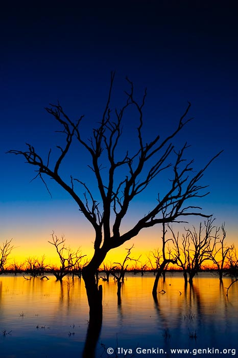 landscapes stock photography | Sunset at The Lake Pamamaroo, Kinchega National Park, NSW, Australia, Image ID AU-LAKE-PAMAMAROO-0002