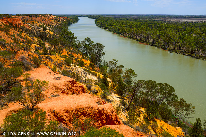 landscapes stock photography | Murray River Near Heading's Cliff, Renmark Paringa District, Riverland, South Australia, Australia, Image ID AU-MURRAY-RIVER-0005