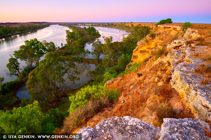 landscapes stock photography | Murray River Cliffs at Dawn, Big Bend, Murray River, South Australia, Australia, Image ID AU-MURRAY-RIVER-0007