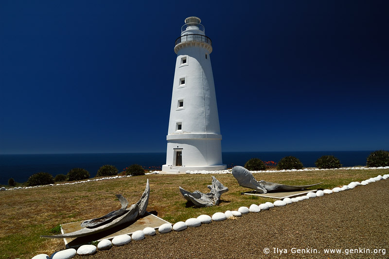lighthouses stock photography | Cape Willoughby Lighthouse, Kangaroo Island, South Australia (SA), Australia, Image ID AU-CAPE-WILLOUGHBY-LIGHTHOUSE-0001