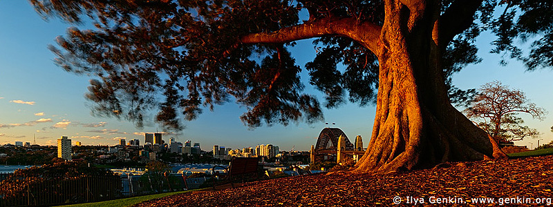 panoramas stock photography | Observatory Hill, Sydney, NSW, Australia, Image ID AUPA0013
